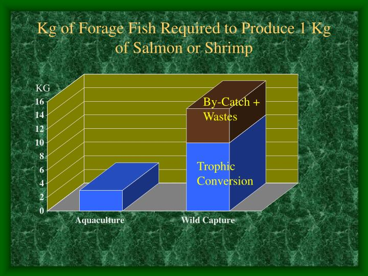 Kg of Forage Fish Required to Produce 1 Kg of Salmon or Shrimp