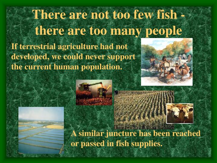 There are not too few fish - there are too many people