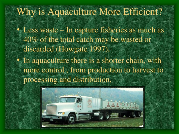 Why is Aquaculture More Efficient?