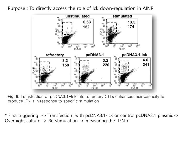 Purpose : To directly access the role of lck down-regulation in AINR