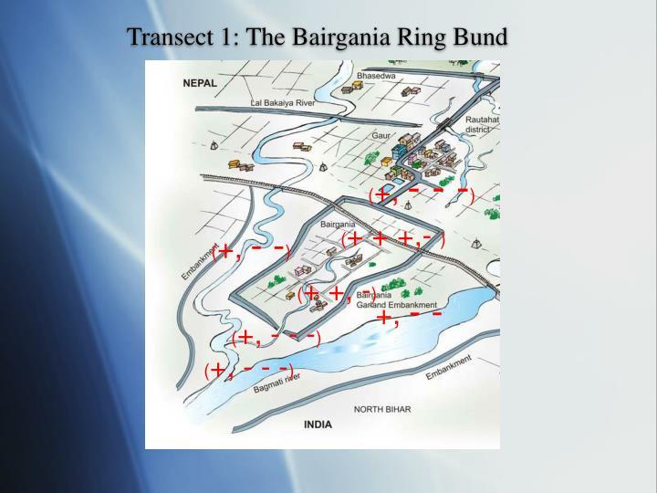 Transect 1: The Bairgania Ring Bund