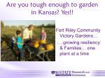 are you tough enough to garden in kansas yes