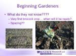 beginning gardeners