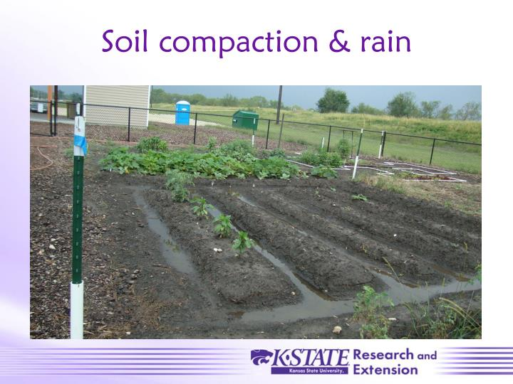 Soil compaction & rain
