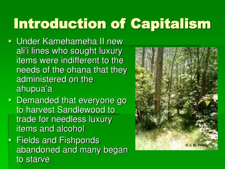Introduction of Capitalism