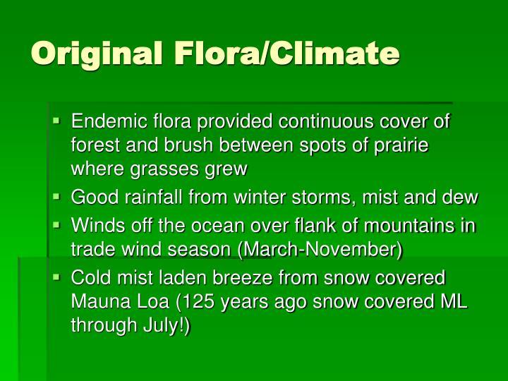 Original Flora/Climate