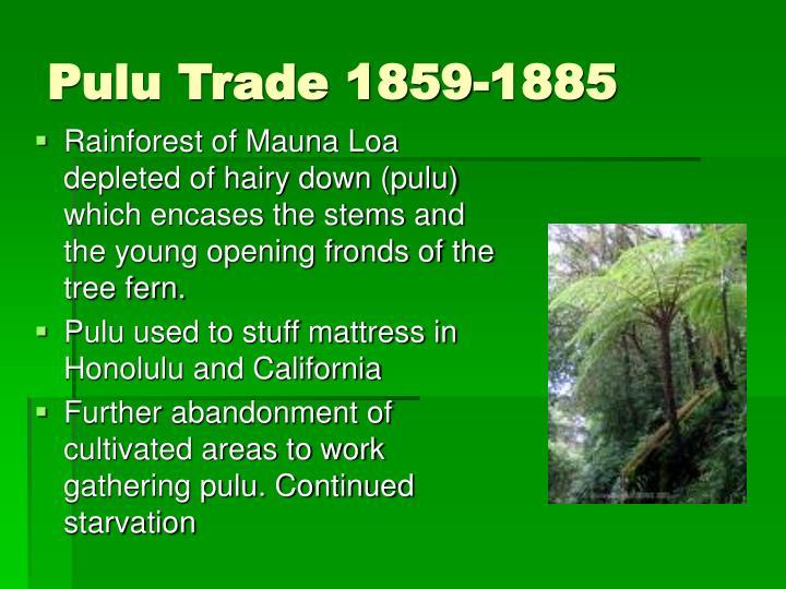 Pulu Trade 1859-1885