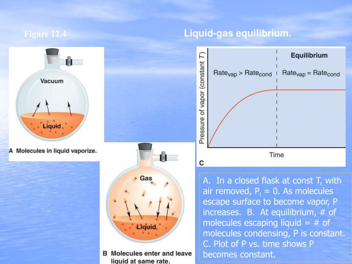 Liquid-gas equilibrium.