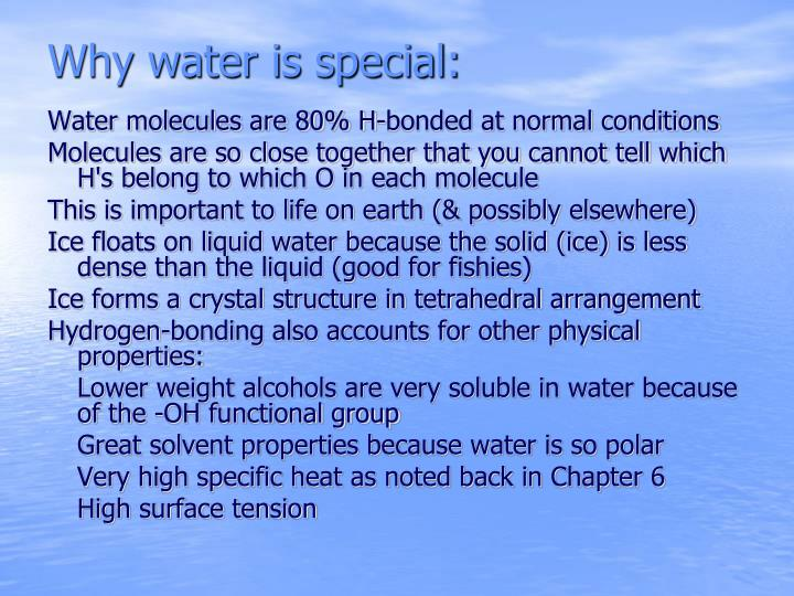Why water is special: