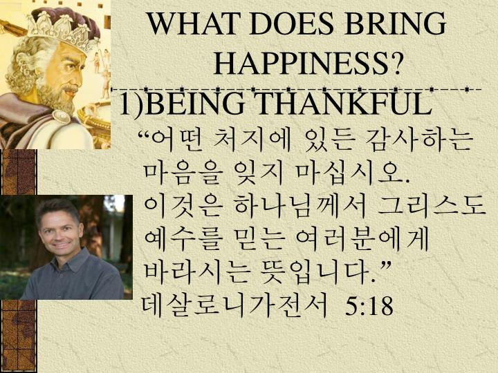 WHAT DOES BRING HAPPINESS?
