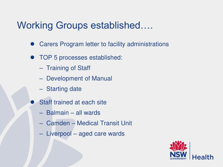 Working Groups established….