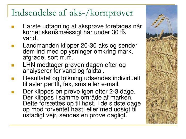 Indsendelse af aks-/kornprøver