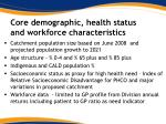 core demographic health status and workforce characteristics
