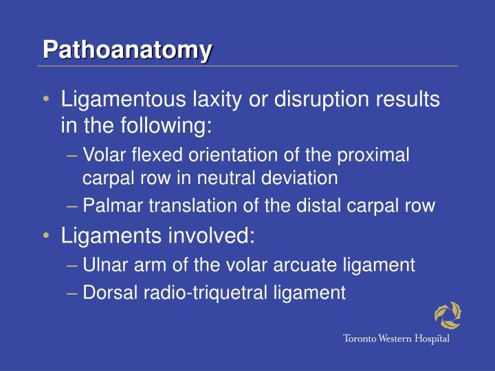 Pathoanatomy