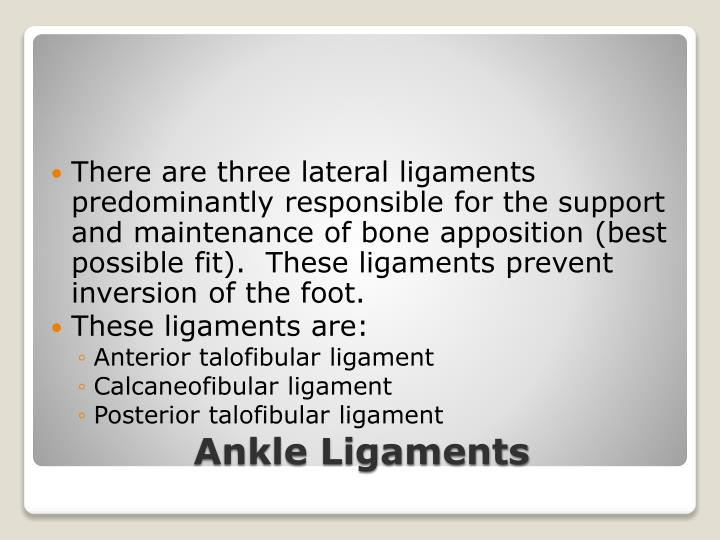 There are three lateral ligaments predominantly responsible for the support and maintenance of bone apposition (best possible fit).  These ligaments prevent inversion of the foot.