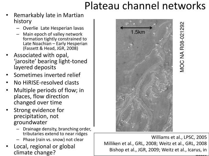 Plateau channel networks