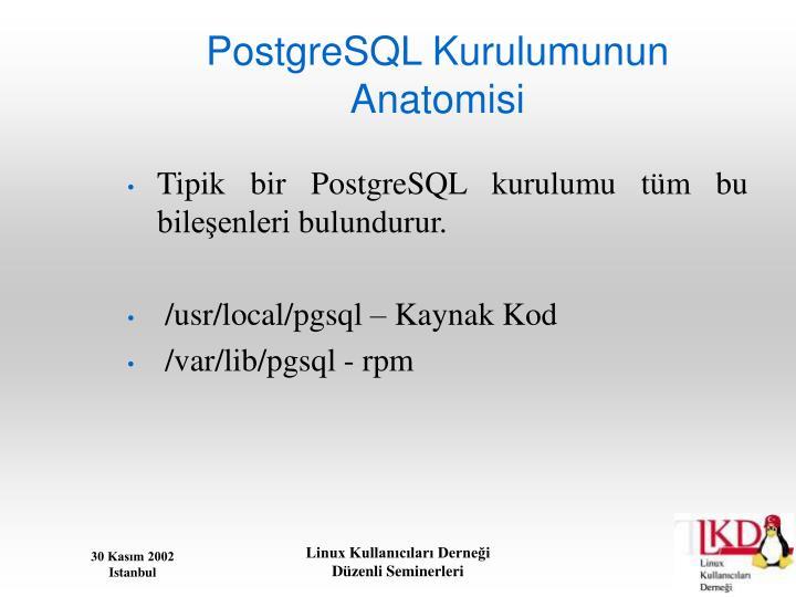 PostgreSQL Kurulumunun Anatomisi