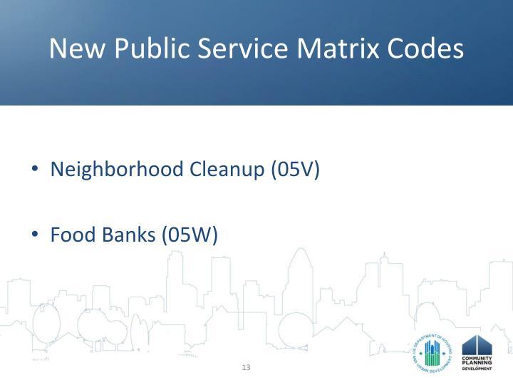 New Public Service Matrix Codes