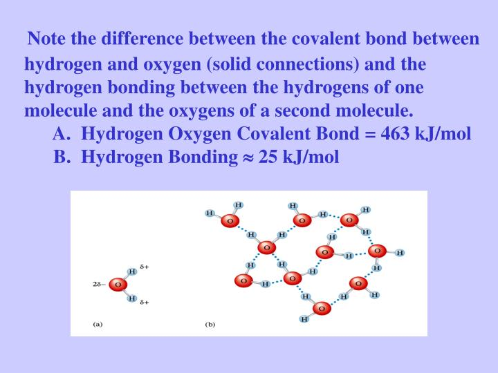 Note the difference between the covalent bond between