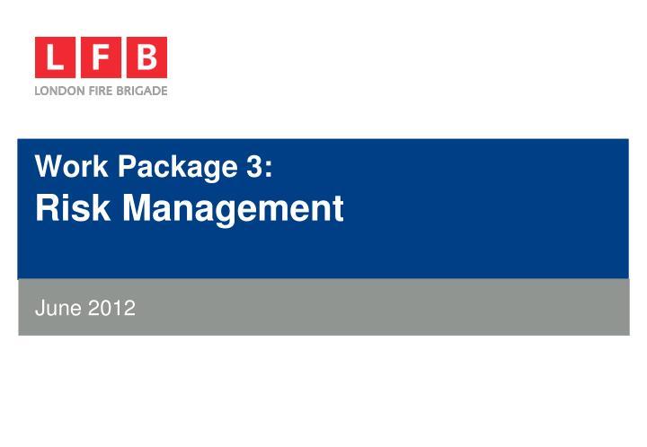 Work Package 3: