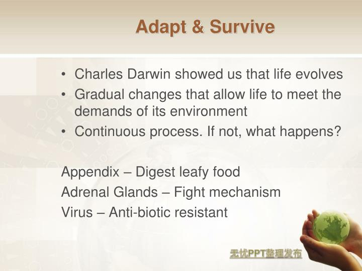 Adapt & Survive
