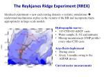 the reykjanes ridge experiment rrex