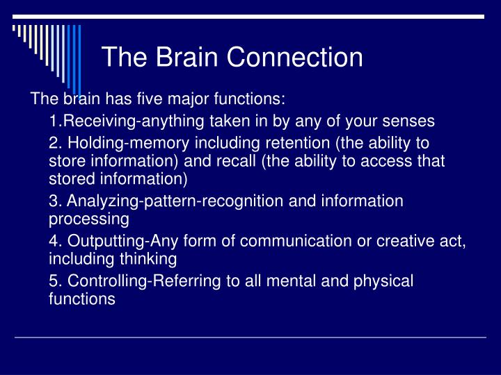 The Brain Connection