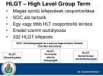 hlgt high level group term