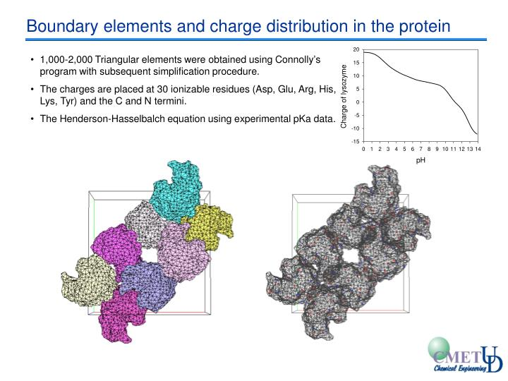 Boundary elements and charge distribution in the protein
