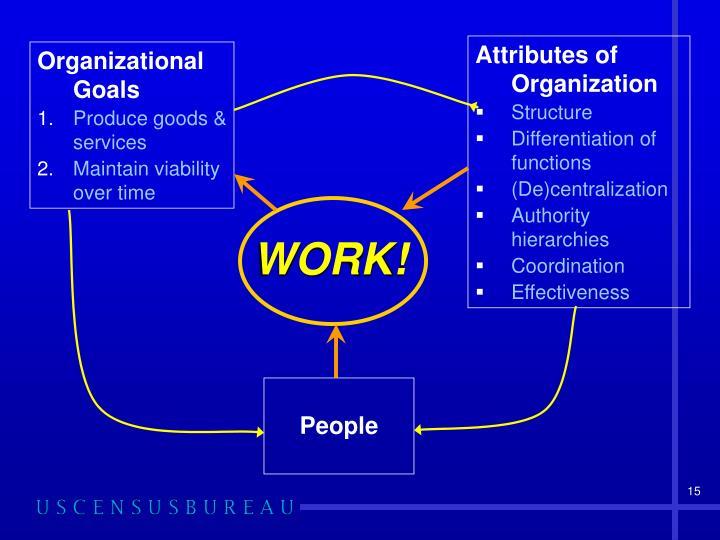 Attributes of Organization