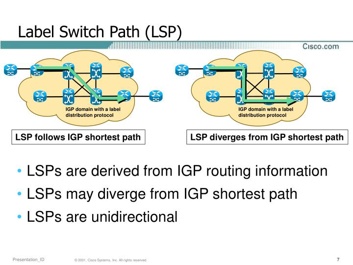Label Switch Path (LSP)
