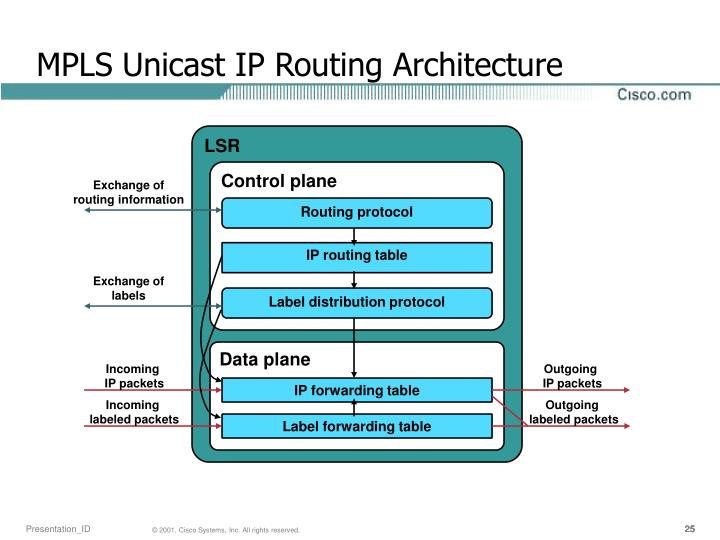 MPLS Unicast IP Routing Architecture