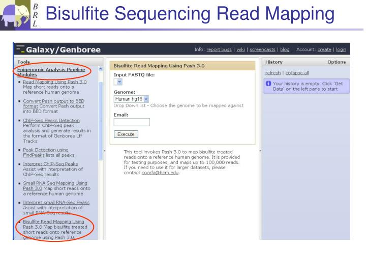 Bisulfite Sequencing Read Mapping