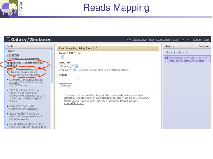 Reads Mapping