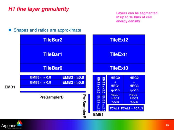 H1 fine layer granularity