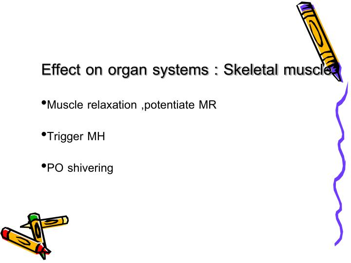 Effect on organ systems : Skeletal muscle