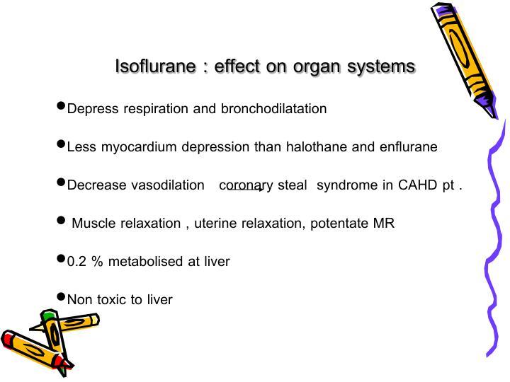 Isoflurane : effect