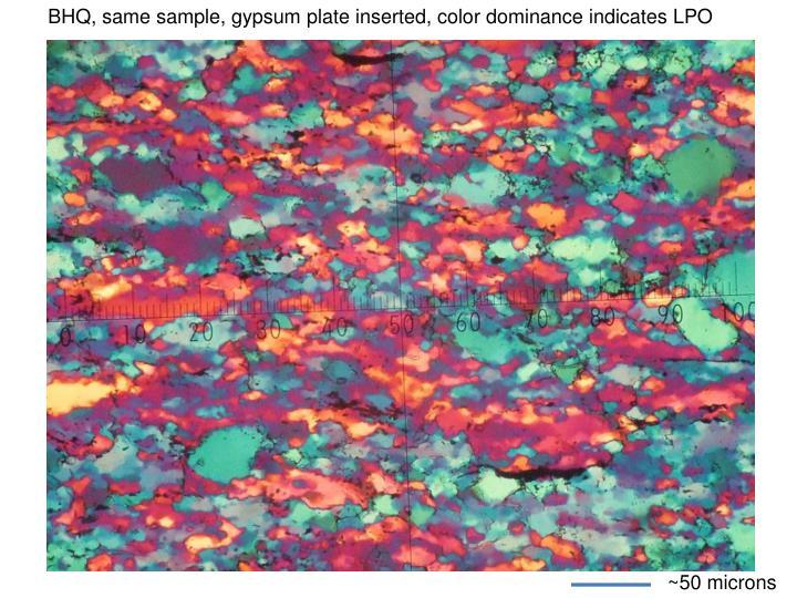BHQ, same sample, gypsum plate inserted, color dominance indicates LPO