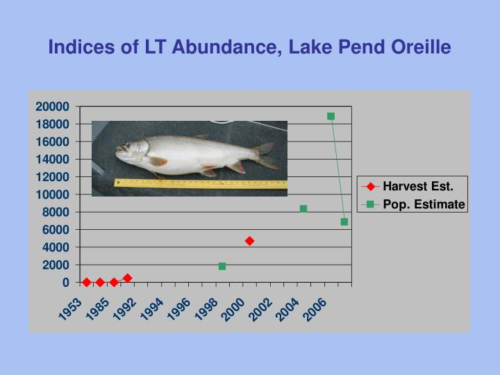 Indices of LT Abundance, Lake Pend Oreille
