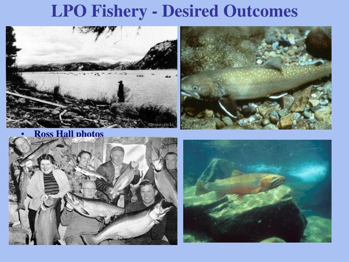 Lpo fishery desired outcomes