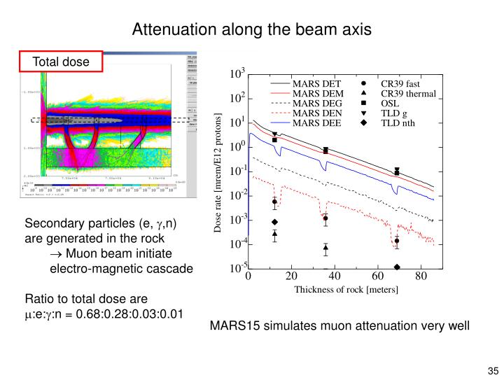 Attenuation along the beam axis