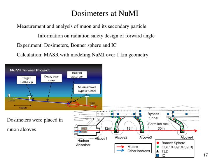 Dosimeters at NuMI