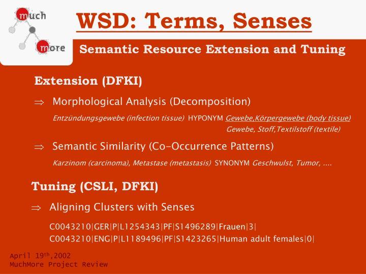 WSD: Terms, Senses