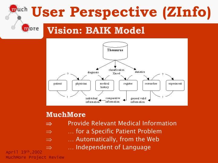 User Perspective (ZInfo)