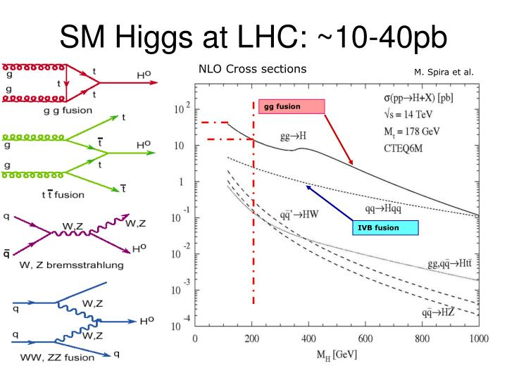 NLO Cross sections