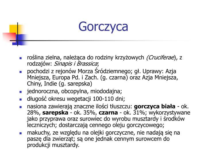 Gorczyca