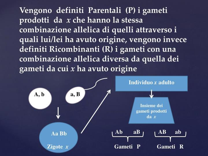 Vengono  definiti  Parentali  (P) i gameti  prodotti  da