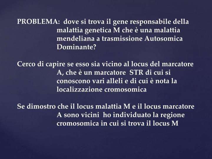 PROBLEMA:  dove si trova il gene responsabile della malattia genetica M che è una malattia mendeliana a trasmissione Autosomica Dominante?