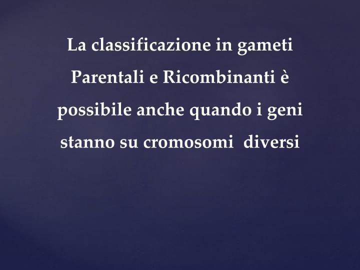 La classificazione in gameti Parentali e Ricombinanti è possibile anche quando i geni stanno su cromosomi  diversi