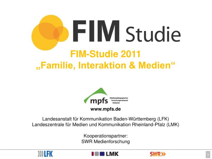 FIM-Studie 2011